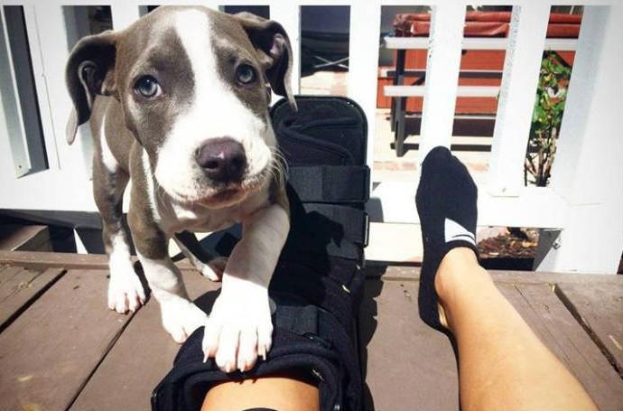 Letícia com seu cachorro mostrando o pé imobilizado (Foto: Reprodução/Facebook)
