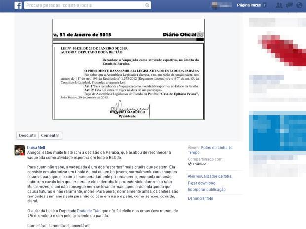 Ativista Luiza Mell usou página em rede social para criticar publicação da lei da Paraíba (Foto: Reprodução/Facebook)