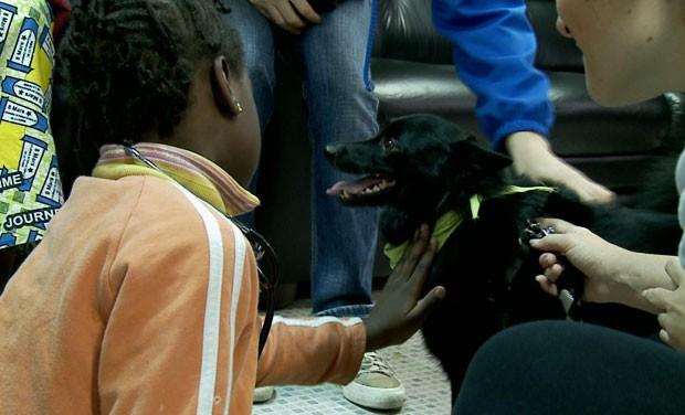 Criança brinca com cão em abrigo de refugiados de São Paulo (Foto: Wagner Santos/G1)