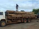 PRF apreende madeira transportada ilegalmente em Dom Eliseu