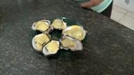 Aprenda a preparar um prato delicioso com ostras
