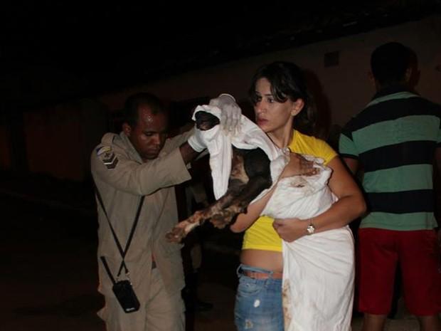 Corpo de Bombeiros ajudaram no resgate da cadela, em Porto Nacional (Foto: Fernanda Póvoa/Arquivo Pessoal)