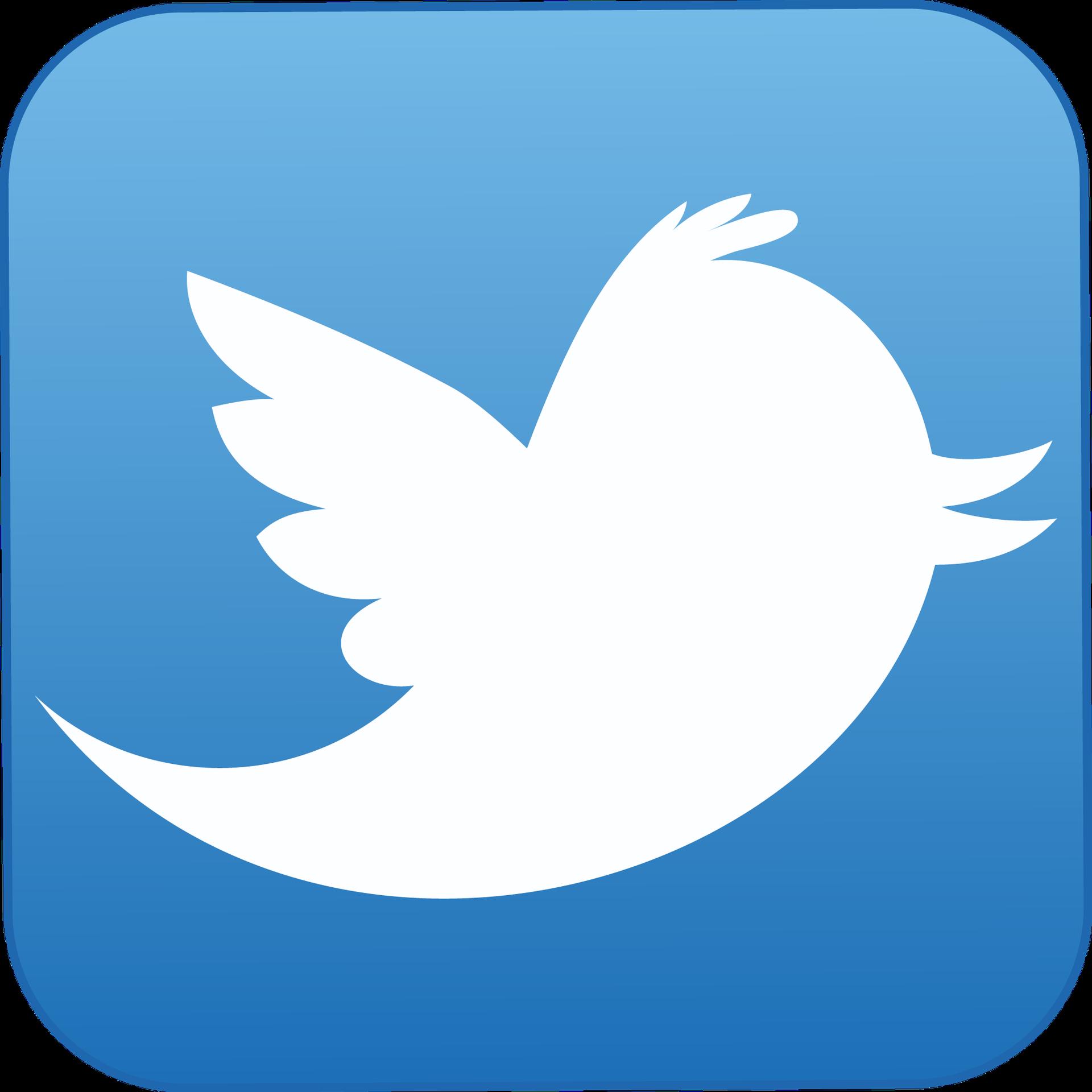 Twitter Logo (Foto: Reprodução)