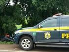 Idoso e criança morrem após colisão em árvore em rodovia do RS