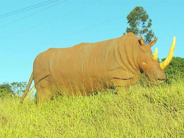 Rinoceronte é um dos animais feitos pelo escultor em Ibitiúra de Minas (Foto: Reprodução EPTV)