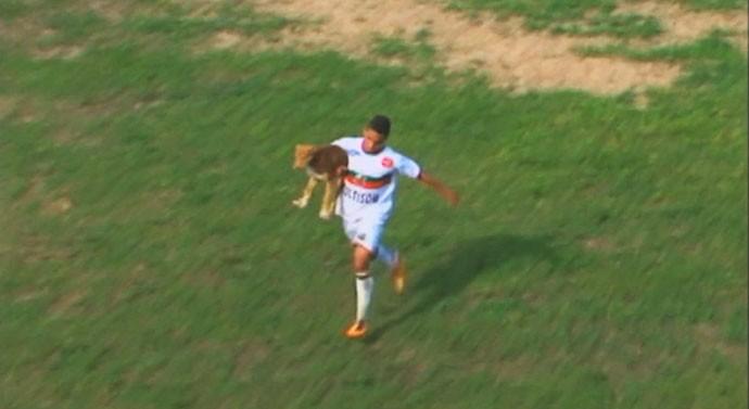 são paulo-rs são paulo cachorro cão rs (Foto: Reprodução/RBS TV)
