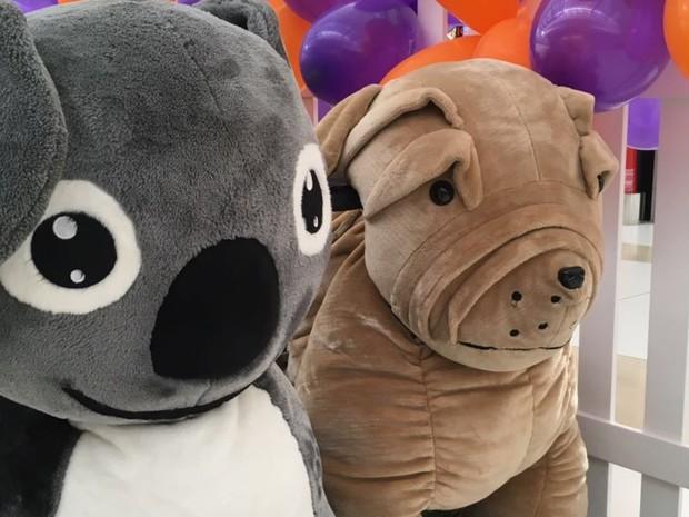 Animal tour pode ser feito por pessoas com até 90 kg em shopping de Goiânia, Goiás (Foto: Divulgação/ Flamboyant)