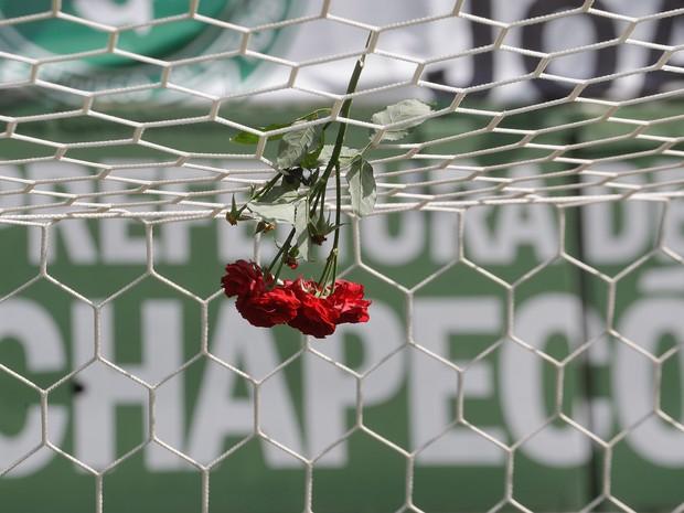 Flores são colocadas nas redes de um dos gols da Arena Condá, em Chapecó (SC), em homenagem às vítimas da queda do avião que levava o time da Chapecoense para a Colômbia (Foto: André Penner/AP)