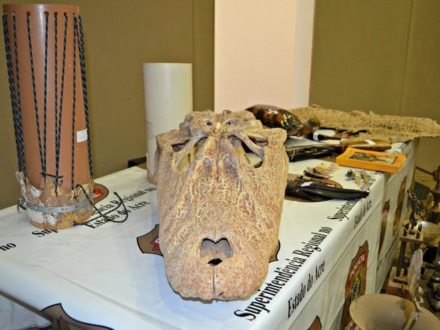 Carcaças de animais, armas e objetos usados para rinhas de galos foram encontrados durante Operação Mustache (Foto: Quésia Melo/G1)