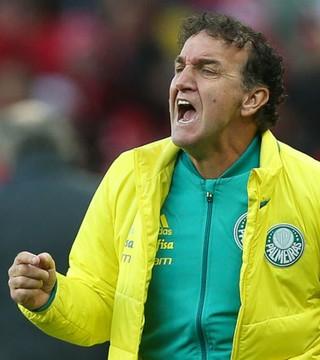 Cuca (Foto: César Greco / Ag. Palmeiras / Divulgação)