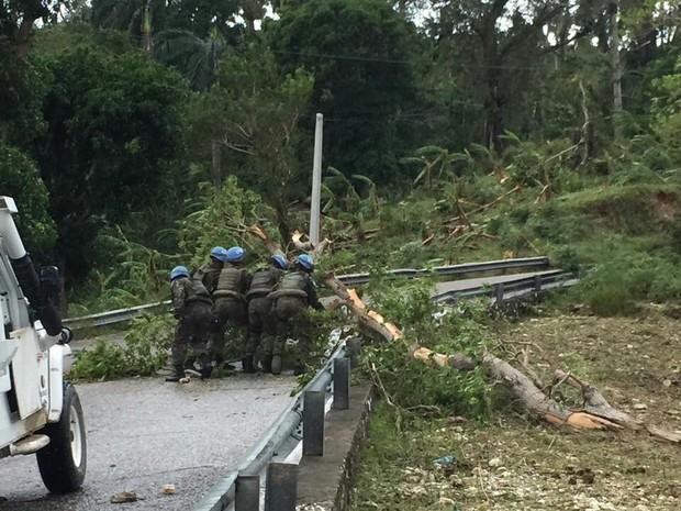 Militares do Brasil tiram árvores de estrada com acesso bloqueado a comunidade no sul do país (Foto: Contingente do Brasil no Haiti/Divulgação)