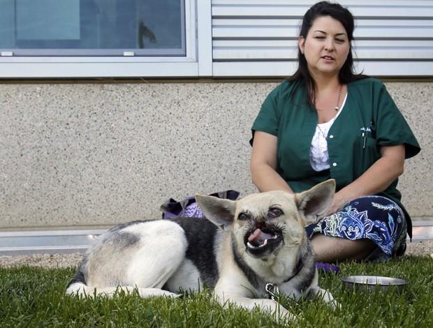 A cadela Kabang, que perdeu o focinho e parte da mandíbula após salvar duas meninas, (Foto: Rich Pedroncelli/AP)
