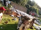 Motorista de caminhão morre preso  às ferragens após acidente na Bahia