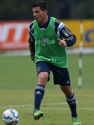 Ayrton Palmeiras (Foto: Cesar Greco/Ag Palmeiras/Divulgação)