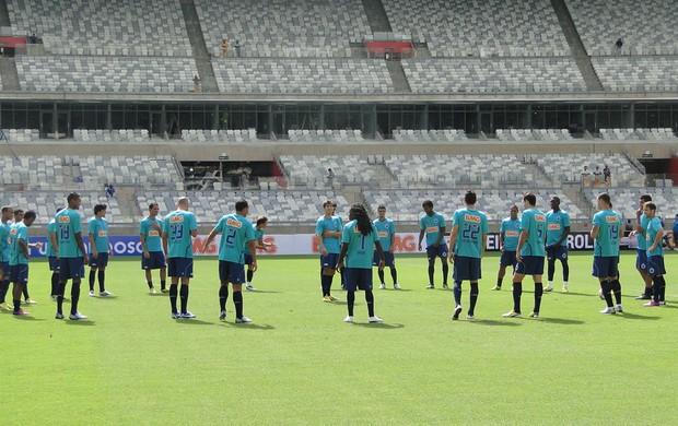 Cruzeiro no Mineirão (Foto: Tarcísio Badaró)