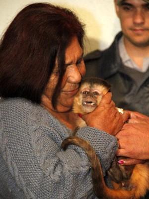 Macaca 'Chico' com a dona após 16 dias separados (Foto: Fabio Rodrigues/G1)