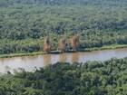 Exército destrói pista clandestina na reserva Yanomami em Roraima