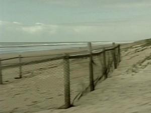 Cercados foram colocados para proteção das tartarugas, no Espírito Santo (Foto: Reprodução/TV Gazeta)