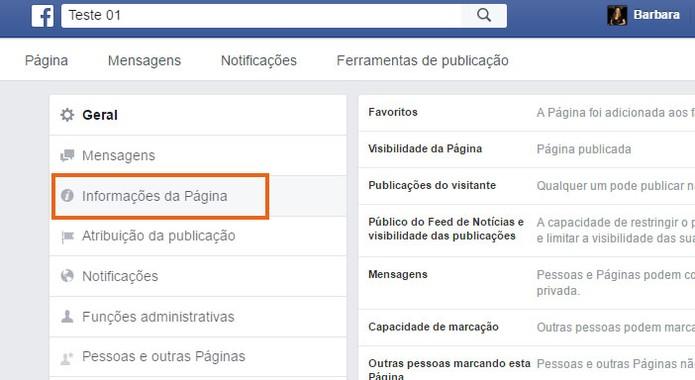 Acesse as informações da Página do Facebook no menu (Foto: Reprodução/Barbara Mannara)