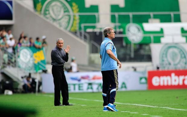 Osvaldo de oliveira Palmeiras x corinthians (Foto: Marcos Ribolli)