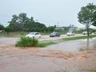 Chuva alaga residências em três bairros e avenida em Campo Grande