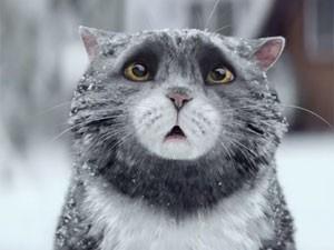 Propaganda da Sainsbury's é protagonizada pelo gato Mog (Foto: Reprodução/YouTube/Sainsbury's)