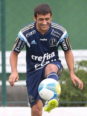 Robinho Palmeiras Futebol (Foto: Cesar Greco/Ag Palmeiras/Divulgação)