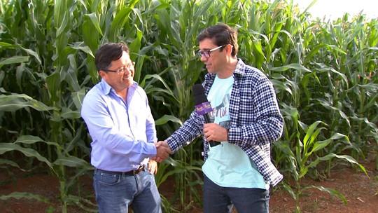 Revista de Sábado mostra a força da agricultura de Capão Bonito