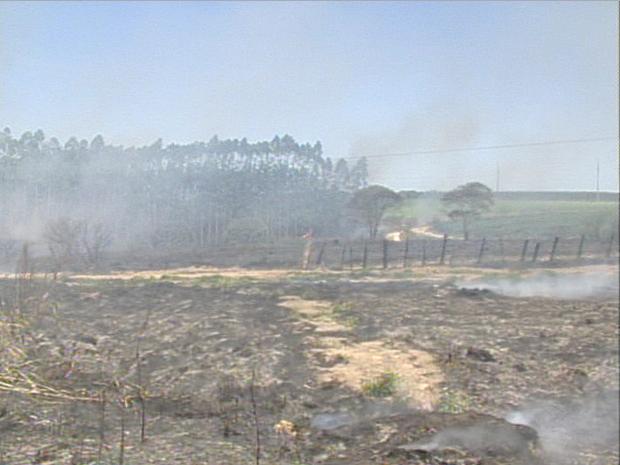 Fogo atinge propriedades de área rural de Aracruz (Foto: Reprodução/TV Gazeta Norte)