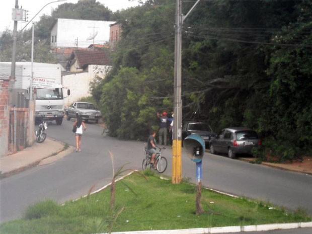 Chuva derruba árvore em bairro de Itajubá. (Foto: Luciano Lopes - TV F5.com)