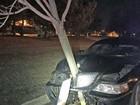 Motorista é flagrada dirigindo com árvore presa na parte frontal do carro