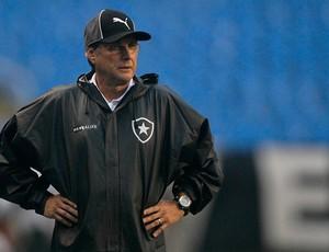 Oswaldo de Oliveira Botafogo x Atlético-MG (Foto: Wagner Meier / AGIF)