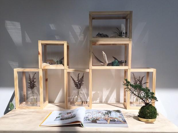 Kokedama, um arranjo especial e contemporâneo para casa (Foto: Flo Atelier)