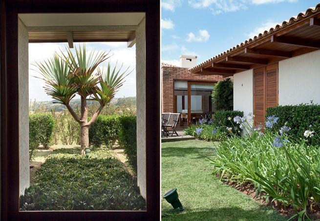 plantas jardim vertical meia sombra:Poucas (e boas) espécies – Casa e Jardim