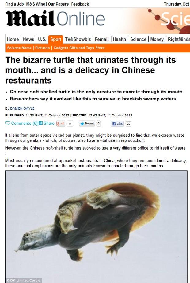 Tartaruga de casco-mole, servida como iguaria na China, é o único animal conhecido que consegue urinar pela boca (Foto: Reprodução/Daily Mail)