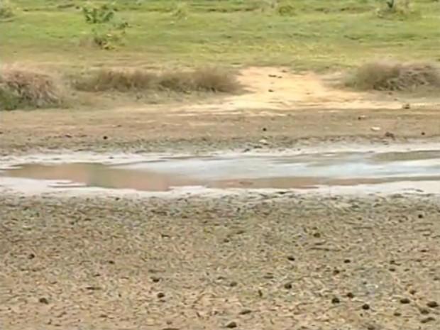 Lagoa tem sido afetada pela estiagem (Foto: Reprodução / TV TEM)