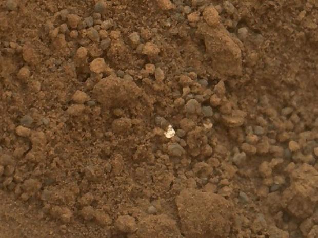 Material brilhante Curiosity (Foto: Nasa/JPL-Caltech)