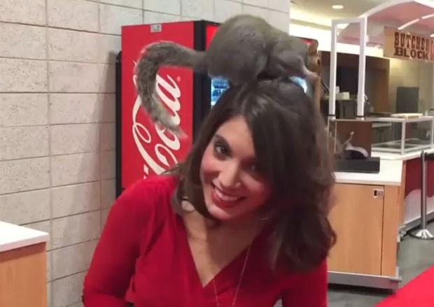 Abusado, esquilo urinou na cabeça da repórter americana Kelly Rippin  (Foto: Reprodução/YouTube/Micah Johnson)