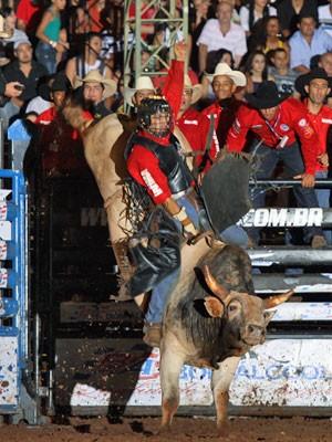 Touro Pesadelo em ação durante rodeio (Foto: Divulgação)