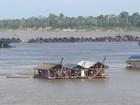 Balsas irregulares são apreendidas em área de garimpo no Amazonas