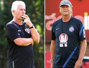 Leão do São Paulo e Falcão do Bahia (Foto: Globoesporte.com)