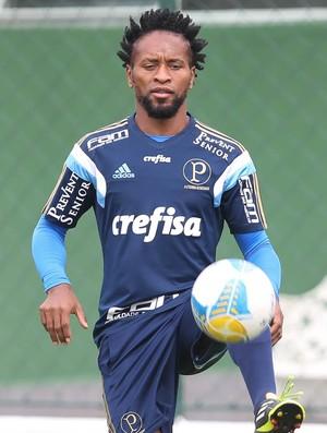Zé Roberto Palmeiras Treino