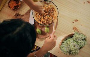 Salada de cevadinha e lentilha germinadas: receita da Bela Gil