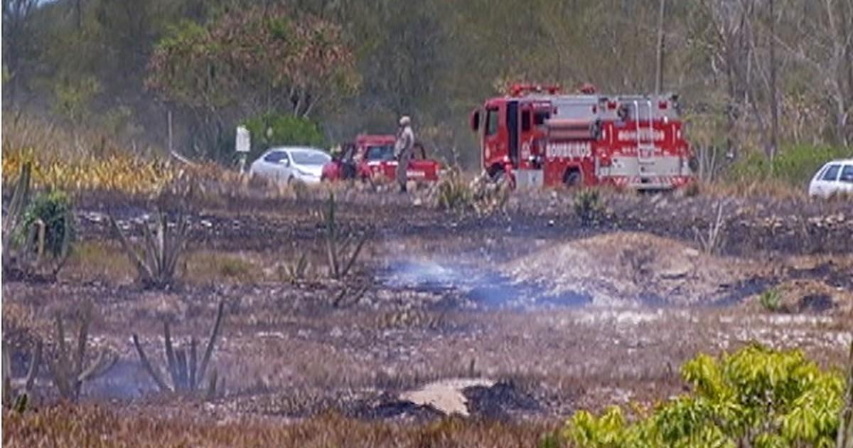 Incêndio consome área preservada em praia de Arraial do Cabo, no ... - Globo.com