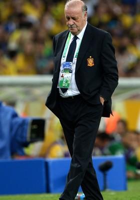 Del Bosque lamenta derrota da Espanha (Foto: Michael Regan/Getty Images)