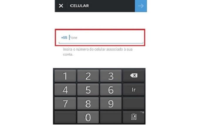 Inserindo o número do celular para recuperar a senha (Foto: Reprodução/Lívia Dâmaso)