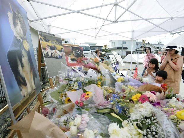 Pessoas rezam em altar no funeral da gata Tama (Foto: Chika Oshima/Kyodo News via AP)