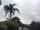 Previsão para o fim de semana é de chuva na Zona da Mata e Vertentes