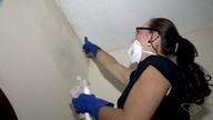 A dica é: Lucy ensina a limpar mofo do teto ou gesso da casa