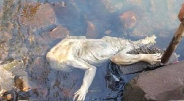 Criatura estranha foi encontrada nas margens do rio Paraná na cidade de Carmen del Paraná (Foto: Reprodução/Facebook)